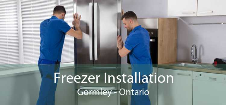 Freezer Installation Gormley - Ontario