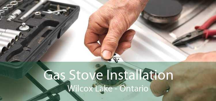 Gas Stove Installation Wilcox Lake - Ontario