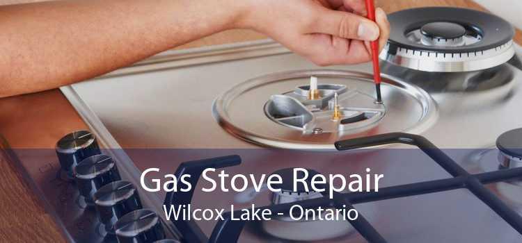 Gas Stove Repair Wilcox Lake - Ontario