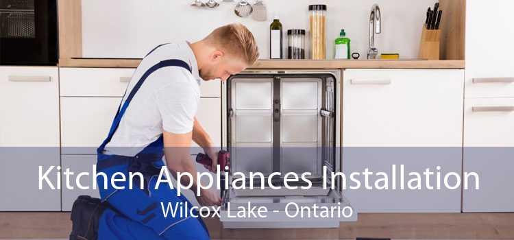 Kitchen Appliances Installation Wilcox Lake - Ontario