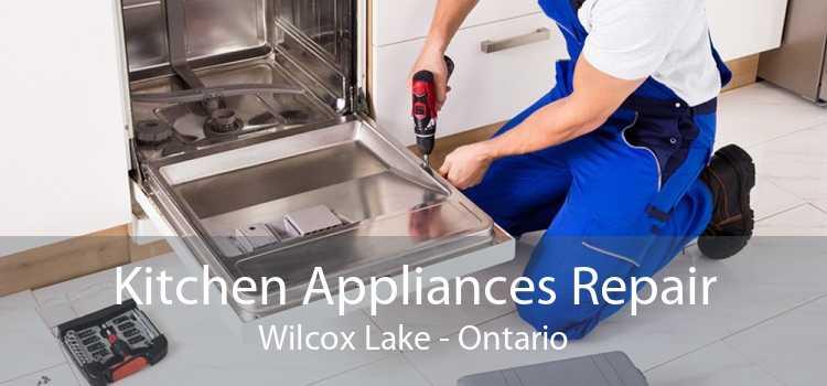 Kitchen Appliances Repair Wilcox Lake - Ontario