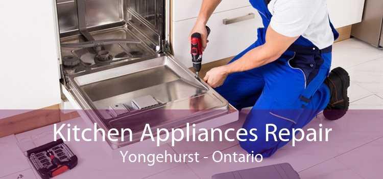 Kitchen Appliances Repair Yongehurst - Ontario