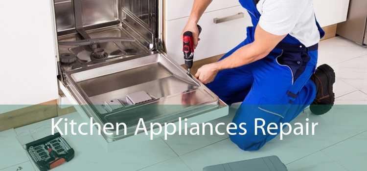 Kitchen Appliances Repair