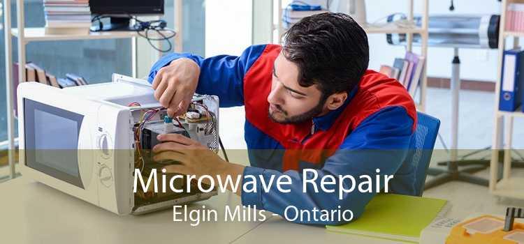 Microwave Repair Elgin Mills - Ontario