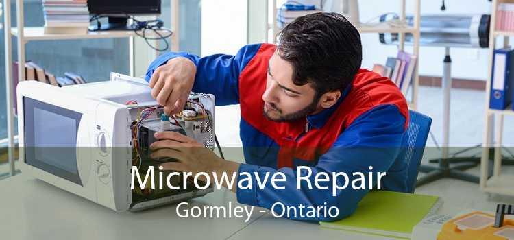 Microwave Repair Gormley - Ontario