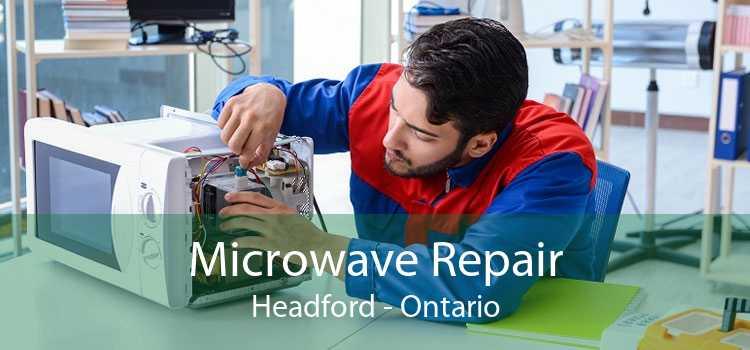 Microwave Repair Headford - Ontario