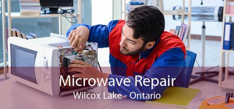 Microwave Repair Wilcox Lake - Ontario