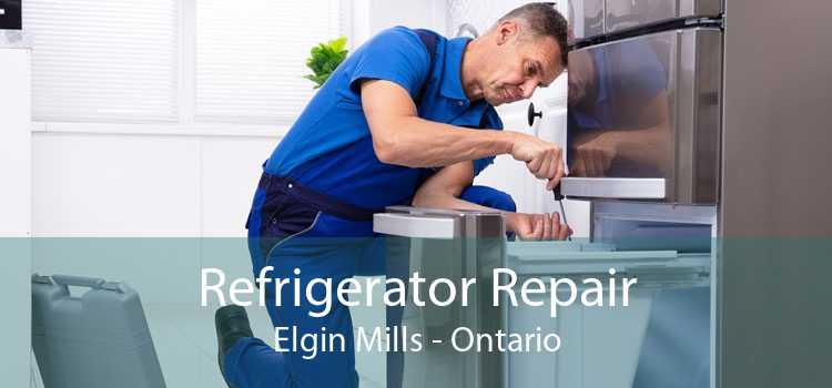 Refrigerator Repair Elgin Mills - Ontario