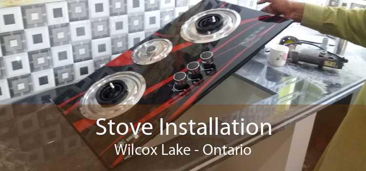 Stove Installation Wilcox Lake - Ontario