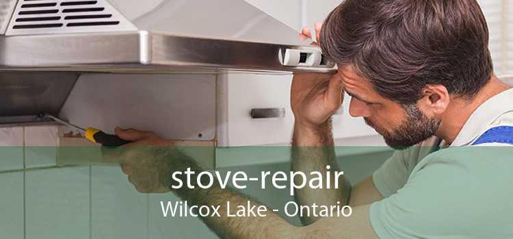 stove-repair Wilcox Lake - Ontario